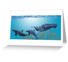 Humpback and Dolphins Greeting Card