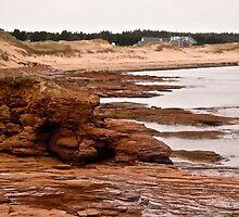 Rocks at Cavendish Beach, PEI, Canada by Shulie1