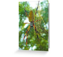 Golden Silk Orbweaver Greeting Card