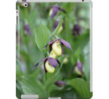 Ladys slipper Orchid iPad Case/Skin