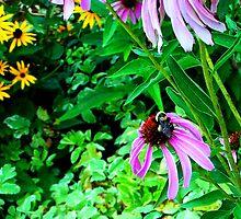 Bee by Mardra