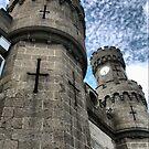 Towering Crenulations by Larry Lingard-Davis