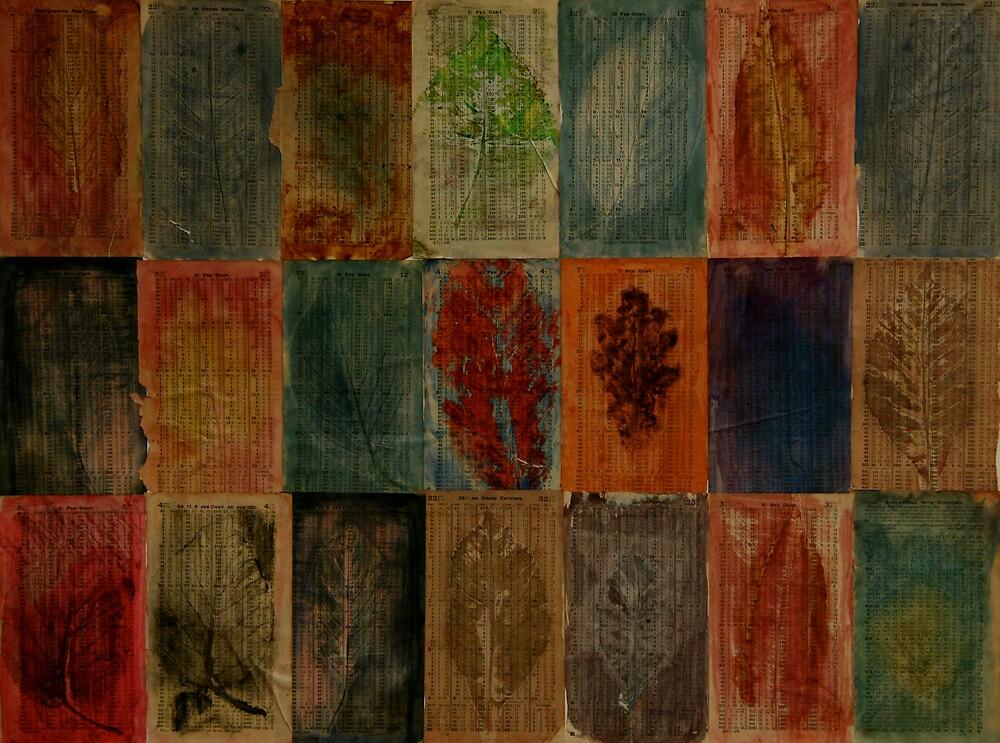 Fall 2008 by Jeremy Wallace
