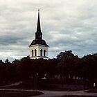 Jarvso Sweden 198406170013  by Fred Mitchell