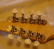 Mandolin tuning knobs by Kirsty  Holton