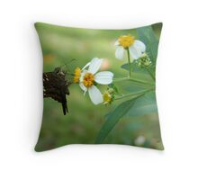 Long Tailed Skipper on Spanish Needle Throw Pillow