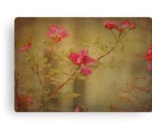 Vintage Rosebush Canvas Print