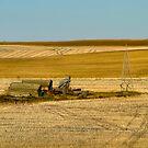Autumn Prairie Treasures  by PFrogg