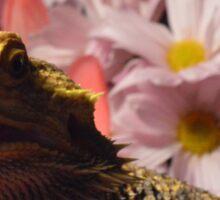 Bearded Dragon Flowers Sticker