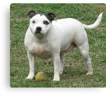 Lilly And Her Ball Canvas Print