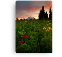 Paintbrush Sunset Canvas Print
