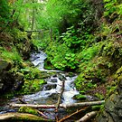 McHugh Creek Falls, Chugach State Park, Alaska by Bob Moore