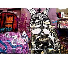 Cat Graffiti Photographic Print