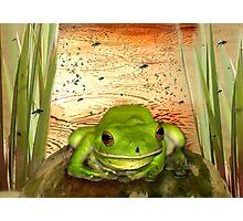 Froggy Heaven Photographic Print
