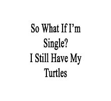 So What If I'm Still Single? I Still Have My Turtles  by supernova23