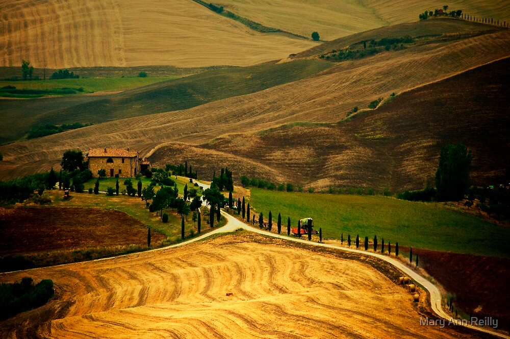 Tuscany, III by Mary Ann Reilly
