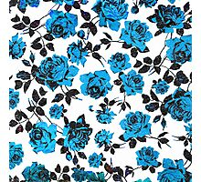 Rustic Blue and Black Stem Rose Pattern Photographic Print