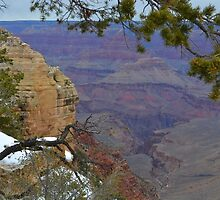 Grand Canyon 14  by Leona Bessey