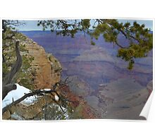 Grand Canyon 14  Poster