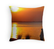 Overlooking the James River Throw Pillow