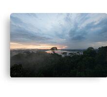 Canopy Sunset Canvas Print