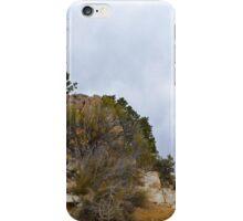 Grand Canyon 16 iPhone Case/Skin
