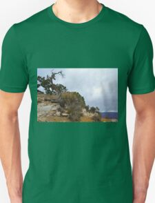 Grand Canyon 16 T-Shirt