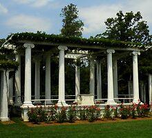 Arlington Amphitheatres ~ Part One by artisandelimage