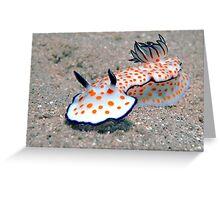 Beautiful risbecia  Greeting Card