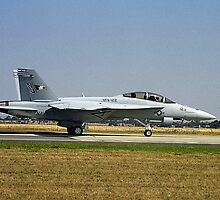 United States Navy F/A-18E/F Super Hornet by Bev Pascoe