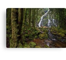 Tasmanian Wilderness Canvas Print