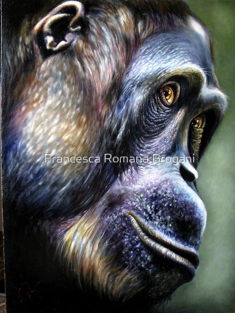 Primate.-orangutan by Francesca Romana Brogani