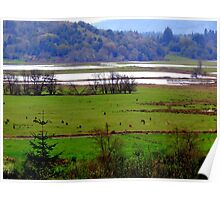 How Green Is My Valley...Coquille, Oregon Poster
