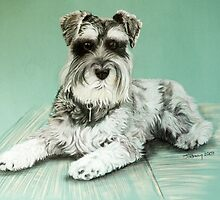 Charlie Dog by Jill Tisbury