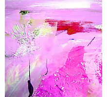 abstract  pink Photographic Print