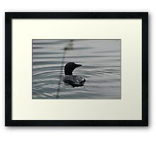 Canadian Loon Silhouette Framed Print