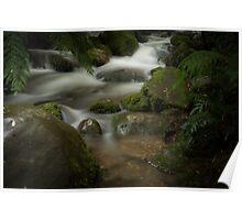 Rainforest falls #2 Poster