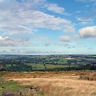 North Yorkshire Moors by Chrispy1953