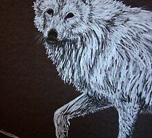 20 Minute Drawing...Detail Wolf Study by Susan Bergstrom