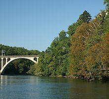 Jonction bridge by Fran E.