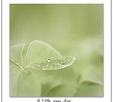 A little green drop by M a r t a P h o t o g r a p h y