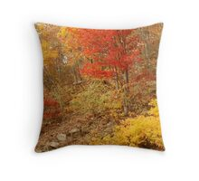 Colors Of Autumn, Shenandoah Throw Pillow