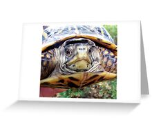 Saved!!! Greeting Card