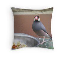 bird eating Throw Pillow