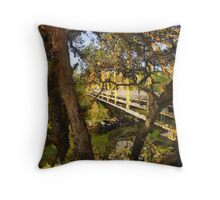 A Peek Into The Past Throw Pillow