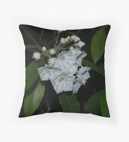 Spring White Throw Pillow