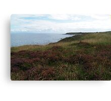 Tarbert Ness Canvas Print