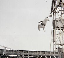 Steel Pier Horse Diving Show Atlantic City NJ USA by Jonathan  Green