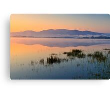 Lough Leane Canvas Print