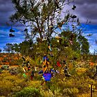 Boot Hill NSW by John Miner